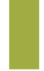 venta-de-plantas-frutales-de-rama-a-raiz-desnuda-diaz-viveros