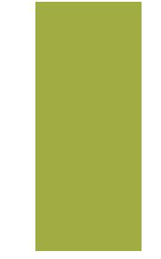 venta-de-plantas-frutales-de-yema-dormida-a-raiz-desnuda-diego-diaz-viveros
