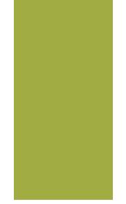 venta-de-plantas-frutales-en-taco-diego-diaz-viveros